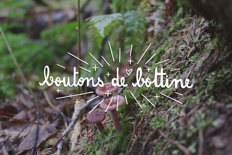 boutons de bottine, mushroom, ouareau forest, quebec, typography, lettering